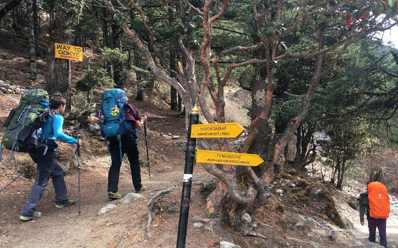 Essential guide for hiking in Nepal