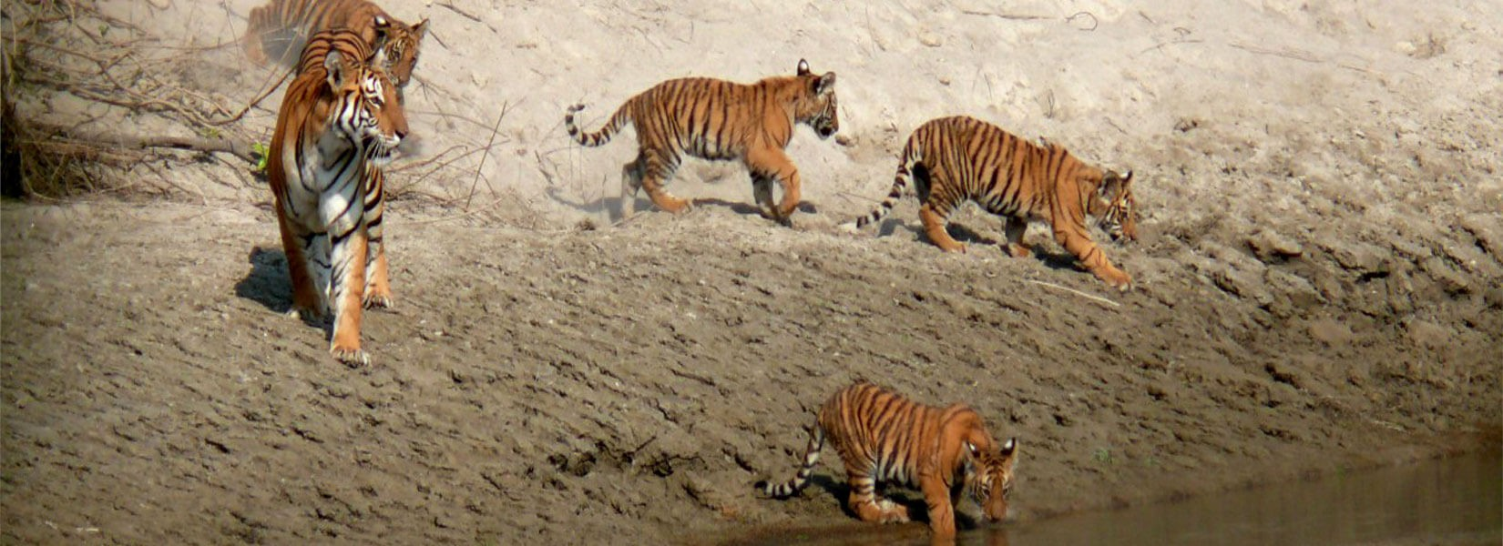 Bardia National Park 3 nights 4 days tour