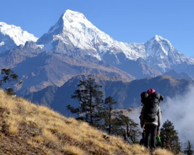 8 Days Kopra Ridge Trek